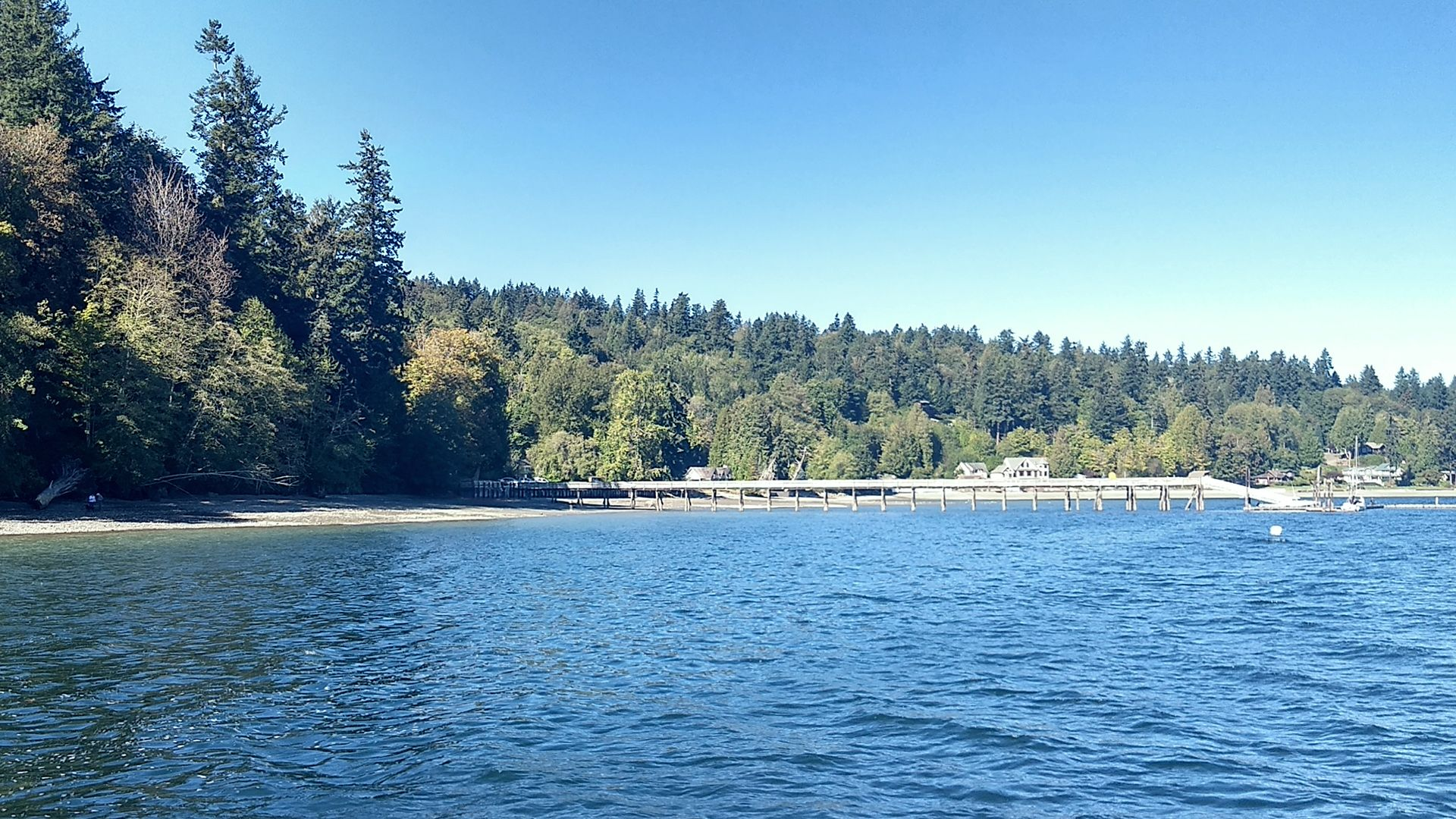A heavily wooded shoreline with a dock extending far into the water.