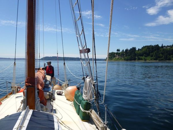 Suddenly Sailing: Twenty Days on the Water